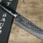 Takeshi Saji VG10 Mirror Hammered Damascus Chef Knives with Micarta Handle